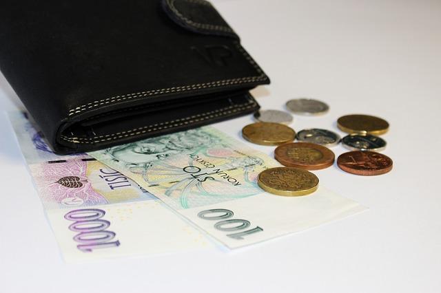 peněženka, koruny, mince