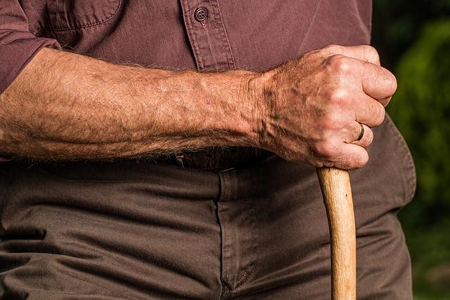 ruka s holí